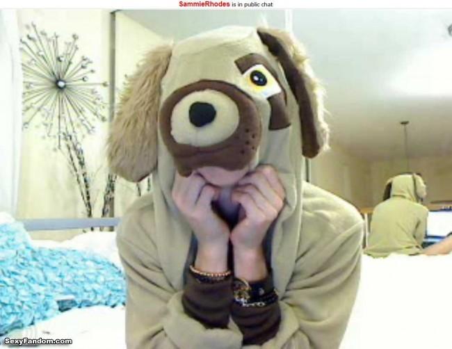 Dog Furry SammieRhodes