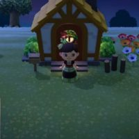 Have Fun With Animal Crossing And Scout